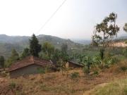 Bwindi-Rwanda