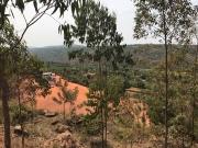 Road Ruanda3