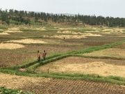 Road Ruanda6