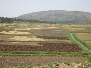 Road Ruanda7