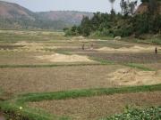 Road Ruanda9