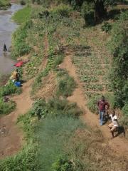 Straßenbild Malawi26